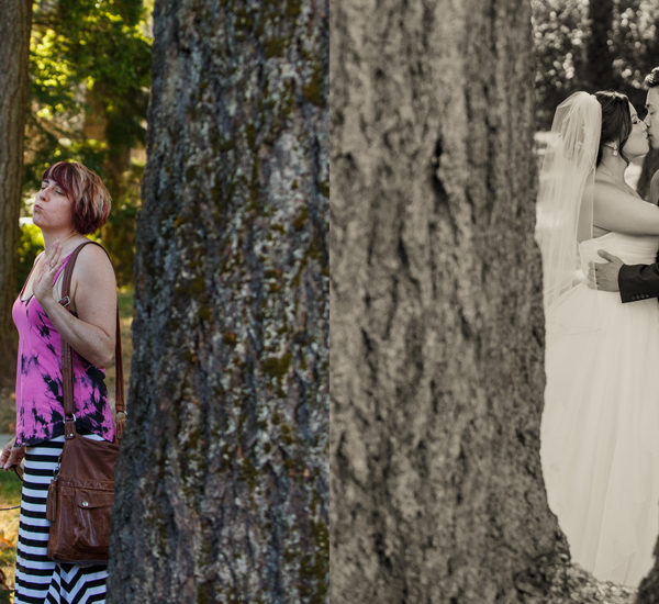 A Look Behind the Scenes of our 2016 Wedding Season
